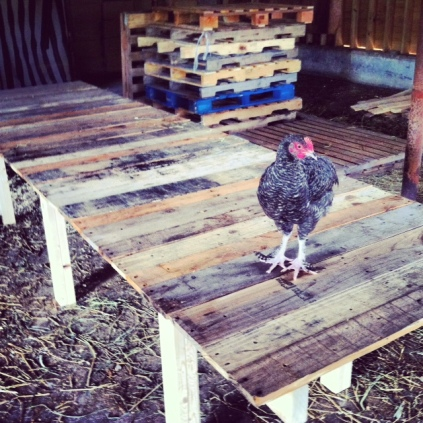 Prototype wooden pallet farmhouse table